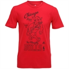 Camiseta Chicago Bulls Washed Adidas NBA